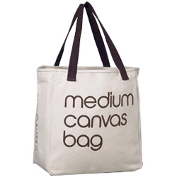Canvas Bags and Gesso